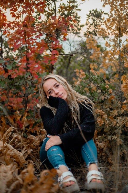 couverture blues automne